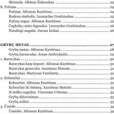 Jonas Ambrukaitis. MIŠKO GĖRYBĖS