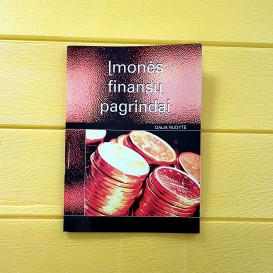 Įmonės finansų pagrindai