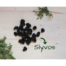 Slyvos