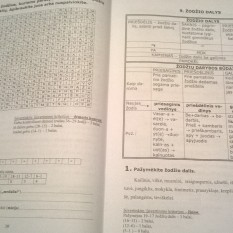 Lietuvių kalbos mokomoji priemonė. 10 klasė. 3 dalis. (mokiniams, besimokantiems pagal pritaikytas programas, su atsakymais)