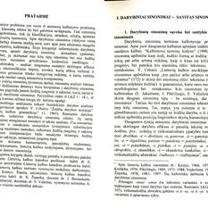 Jolanta Vaskelienė. Darybiniai sinonimai
