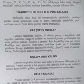 Angelė Laucienė, Rita Baltmiškienė. Gimtosios kalbos taisyklių mokymasis žaidžiant